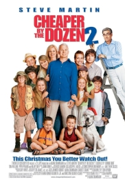 فیلم Cheaper by the Dozen 2