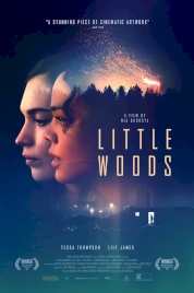 فیلم Little Woods